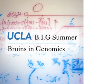 Apply to B I G  SUMMER 2019 – Institute for Quantitative and